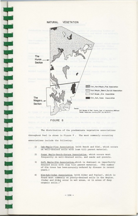 XII Forestry_Page_03